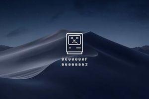 iOS 12 và MacOS Mojave làm đảo lộn cuộc sống của tôi như thế nào?