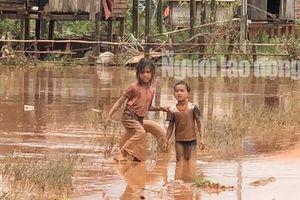 THẢM HỌA VỠ ĐẬP THỦY ĐIỆN: Động vật chết khắp nơi, trẻ em lội bùn nhận cứu trợ