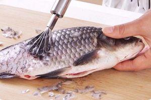 Vảy cá - Thần dược đánh tan khối u