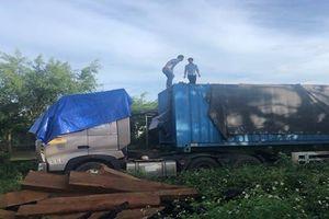 Bắt giữ gần 50m3 gỗ lậu tại huyện Kong Chro