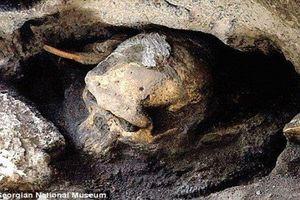 Khai quật công cụ bằng đá, phát hiện sốc về tổ tiên loài người