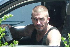 David Beckham điển trai và nam tính khi để kiểu tóc húi cua