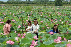 Nông dân An Phú làm du lịch