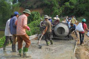 Cựu chiến binh Tuyên Quang chung sức xây dựng NTM