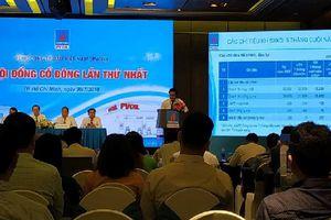 ĐHĐCĐ PVOil: Sẽ xây dựng lại phương án thoái vốn của Nhà nước, đại diện Vietjet vào HĐQT