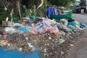 TP.HCM: Làng đại học sống chung với rác