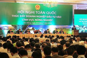 Nhận diện 10 khó khăn trong thúc đẩy đầu tư vào nông nghiệp