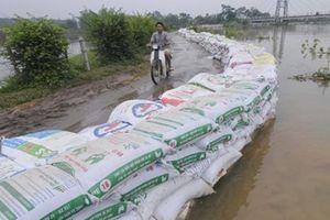 Hà Nội: Người dân thấp thỏm thâu đêm canh nước đê tả Bùi