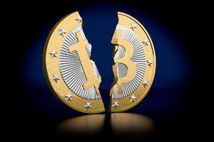 Hỗn loạn nhấn chìm thị trường tiền ảo