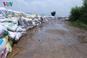 Đắp hàng nghìn bao cát bảo vệ đê tả sông Bùi, Chương Mỹ-Hà Nội