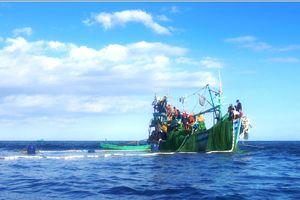 Kiên quyết xử lý nghiêm ngư dân vi phạm vùng biển nước ngoài