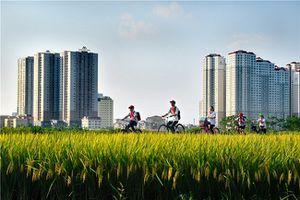 Triển lãm ảnh nghệ thuật về 10 năm Hà Nội mở rộng địa giới hành chính