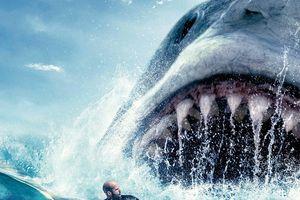Những bộ phim về hung thần đại dương gây ám ảnh