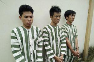Bắt nóng nhóm đối tượng dùng súng cướp ô tô ở Đồng Nai