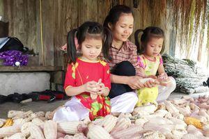 Hà Nội sẽ có chính sách hỗ trợ người cao tuổi sinh con gái một bề?