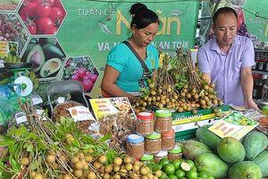 Đưa nông sản Sơn La về Hà Nội: Giảm nỗi lo được mùa, mất giá