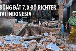 91 người thiệt mạng vì động đất tại đảo du lịch Indonesia