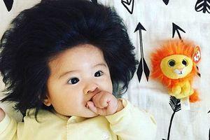 Bé gái người Nhật 'đốn tim' vạn người nhờ mái tóc đặc biệt