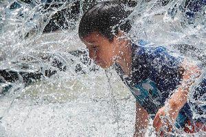 'Trăm phương ngàn kế' chống chọi nắng nóng kỷ lục trên khắp thế giới