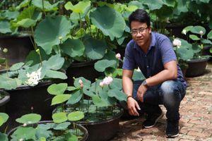 Tuyệt chiêu trồng sen một tháng đã 'bắt' trổ bông của 9X xứ Quảng