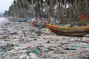 Biển Mũi Né tràn ngập rác, khách hủy đặt phòng