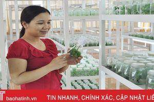 Nghiên cứu ứng dụng nấm ký sinh phòng trừ sâu hại ở Hà Tĩnh