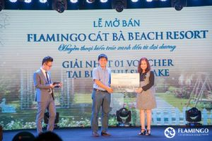 Thanh tra dự án Flamingo Cát Bà Beach Resort