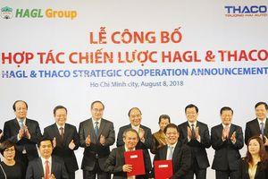 Ông Trần Bá Dương sẽ tái cấu trúc HNG, Thaco – Đại Quang Minh đầu tư giai đoạn 2 dự án HAGL Myanmar