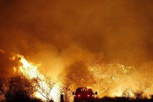 Cháy rừng kỷ lục ở California kéo dài đến cuối tháng 8