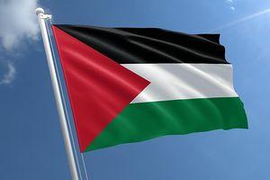 Colombia trở thành quốc gia mới nhất công nhận Nhà nước Palestine