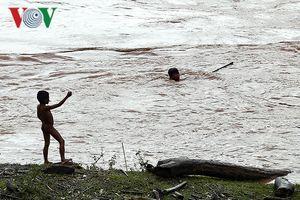 Người dân Điện Biên bất chấp tính mạng, lao vào dòng nước lũ mưu sinh