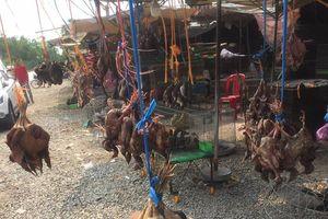Bát nháo chợ chim Thạnh Hóa