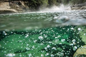Dòng sông nóng nhất thế giới có nhiệt độ bao nhiêu?