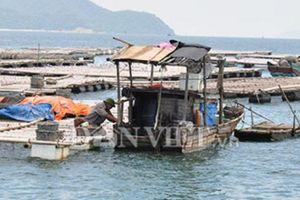 Người nuôi ngao đảo Vĩnh Thực: Hoang mang chờ quy hoạch