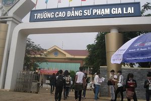 Gia Lai: Thí sinh bị đánh trượt ngành SP Ngữ văn trúng tuyển NV3 của trường