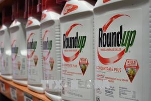Công ty mẹ của Monsanto lên tiếng sau phán quyết của tòa án Mỹ