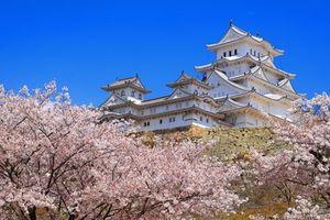 5 lâu đài đẹp nhất ở Nhật Bản
