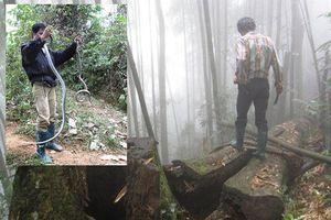 Rùng mình cảnh tay không bắt rắn hổ mang chúa trong rừng sâu Lào Cai