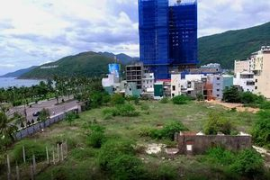 Cỏ dại phủ kín ở hai dự án nghìn tỷ trên 'đất vàng' Quy Nhơn