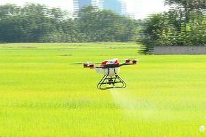 'Đã mắt' xem máy bay không người lái phun thuốc trừ sâu tại Hà Tĩnh