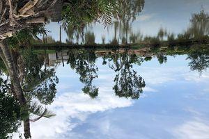 Thanh Hóa: Hết thời hạn thuê đất, người dân không tuân thủ pháp luật