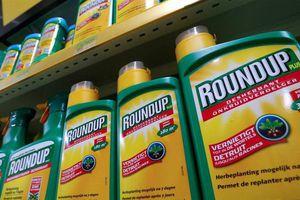Xung quanh hoạt chất glyphosate trong thuốc diệt cỏ: Bộ NN&PTNT đã dừng đăng ký mới