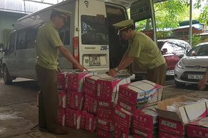 Nhập lậu hạt dưa Trung Quốc về Việt Nam làm bánh trung thu