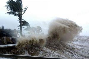 Các tỉnh từ Quảng Ninh đến Hà Tĩnh dự kiến bị ảnh hưởng bão số 4