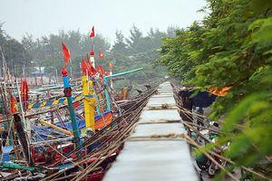 Bão số 4 đang quần thảo ở khu vực trú đậu tàu trên đảo Bạch Long Vĩ