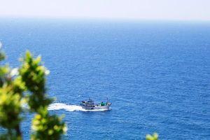 Ngắm nhìn những cung đường biển đẹp mộng mơ từ Cam Ranh đến TP.HCM
