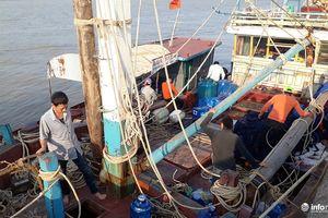 Thanh Hóa: Tăng cường xử lý tàu cá khai thác trái phép vùng biển nước ngoài