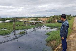 Hà Tĩnh: Hồ tôm xả nước thải không qua xử lý khiến dân và biển Nghi Xuân 'kêu cứu'