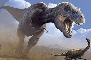 Những hiểu biết sai lầm của chúng ta về khủng long bạo chúa