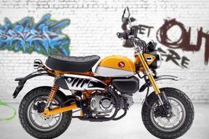 Sau 50 năm, Honda Monkey thay đổi 'chóng mặt'